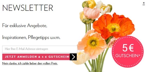 BLOOMY DAYS Gutschein Newsletter