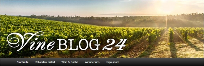VineShop24 Blog