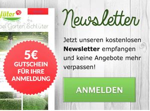 garten-schlueter-gutschein-newsletter