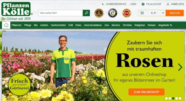 Pflanzen Kölle Onlineshop